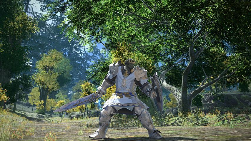 最终幻想14职业资料:特职 - 骑士