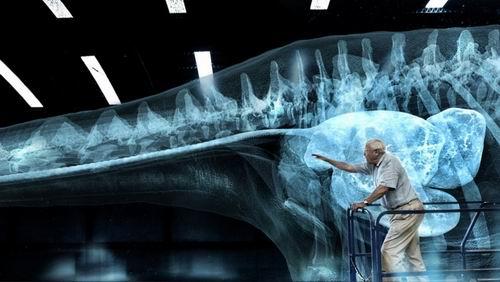 BBC拍摄全景恐龙记录片 总共耗时4万小时
